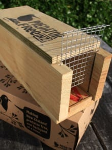 Sponsor a Ferret Trap at The Island Hills Station
